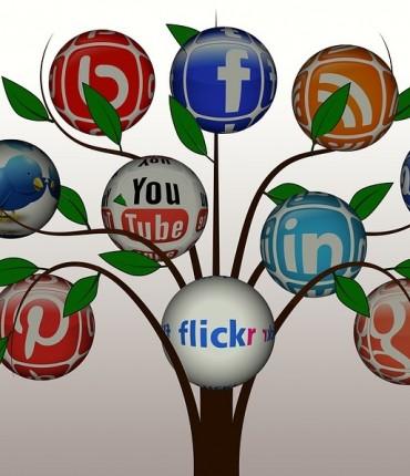 Tree Réseaux sociaux